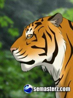 Темы с тиграми