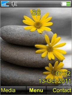 Flower - тема для Сони Эриксон 240х320
